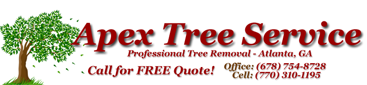 Atlanta Tree Removal - Apex Tree Service